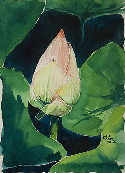 New Born Lotus by Beng Lim