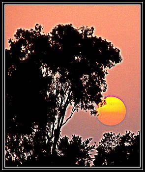 Anand Swaroop Manchiraju - RAISING SUN