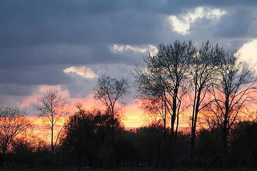 Rebecca Frank - Sunset