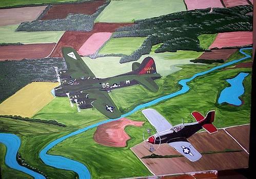 332th Redtail by Otis L Stanley