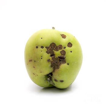 BERNARD JAUBERT - Apple