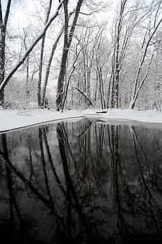 Millstone River by Frank DiGiovanni