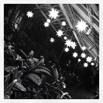 Instagram Photo by Colleen Sullivan