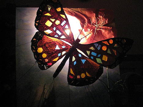 Last Stage of the Butterfly by Yvette Co