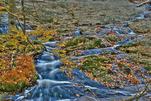 Mark Dodd - Big Hunting Creek upstream from Cunningham Falls