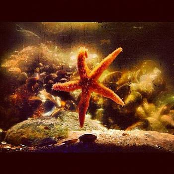 Instagram Photo by Andrea Romero