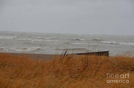 Randy J Heath - Hurricane Sandy