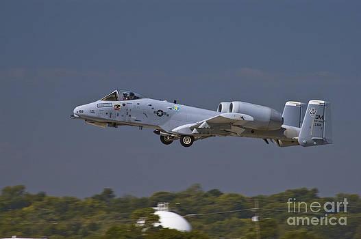 Tim Mulina - A-10 Thunderbolt Takeoff