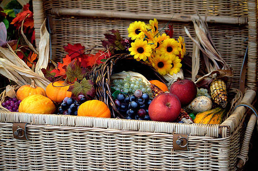 A Basket of Goodies by Jale Fancey