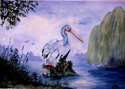 A Bird In The Sanctuary... by Shashikanta Parida