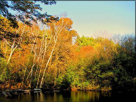 A Bit of Autumn by Victoria Sheldon