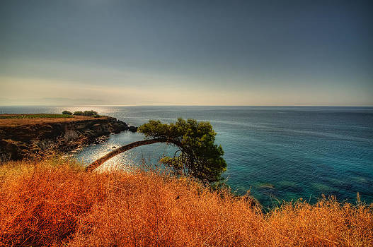 A bow to the sea by Stamatis Gr