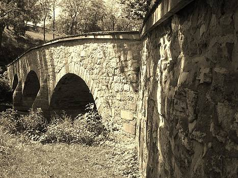 A Bridge with History by Trish Pitts