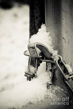 A Cold Lock by Leaetta Mitchell