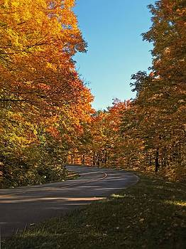 Chantal PhotoPix - A Country Road in a Fall Landscape
