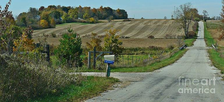 A Country Road by Susan Olga Linville