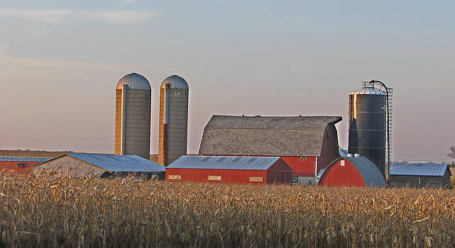 A Country Scene by Victoria Sheldon