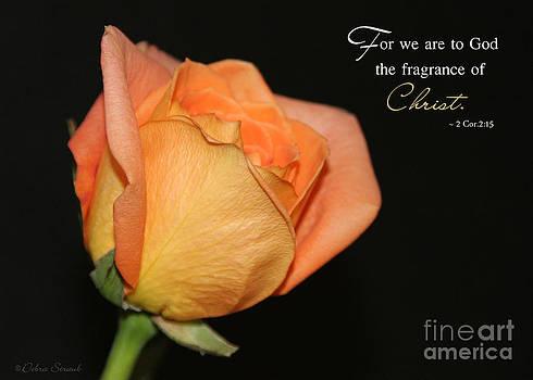 A Divine Fragrance by Debra Straub