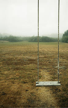 A Empty Childrens Swing In A Field by Marlene Ford