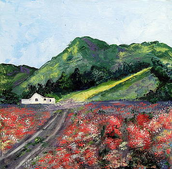 A Field in Lompoc by Trudy Morris