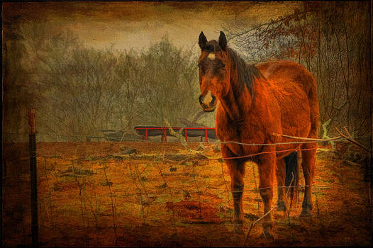 A Friend by James Corley