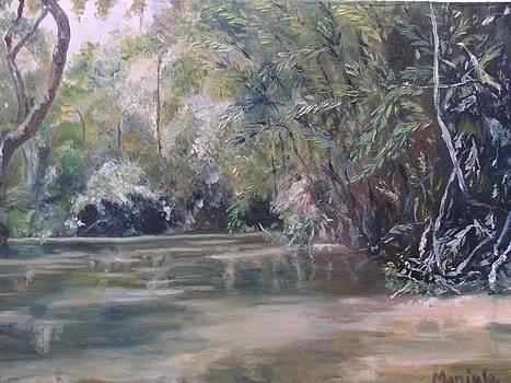 A lake in a forest by Manjula Prabhakaran Dubey