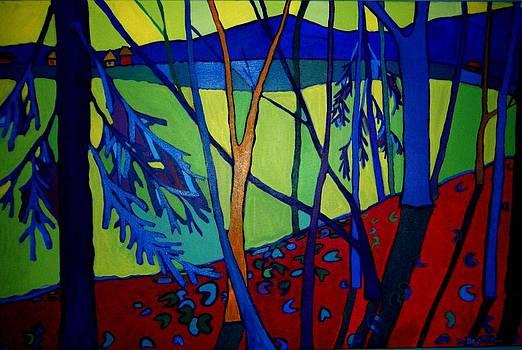 A Light in the Forest by Debra Bretton Robinson
