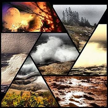 A Little #collage Of Some #maine Pics by Tracey Manning