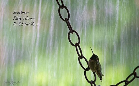Darlene Bell - A Little Rain