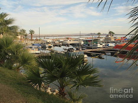 A Marina on Lake Havasu by Michaline  Bak