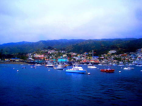 A Misty Morning in Avalon Harbor by Catherine Natalia  Roche