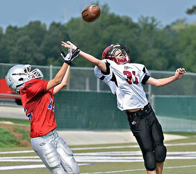 A Pass for the Touchdown by Susan Leggett