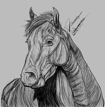 A quick sketch by Destiney Roberts