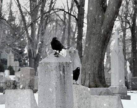 Gothicrow Images - A Quiet Winter Day At The Graveyard