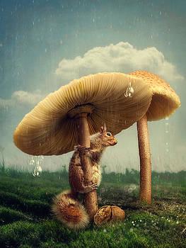A rainy day by Cindy Grundsten