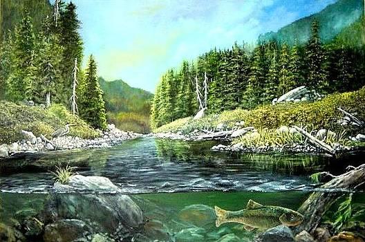 A Rivers View by Syndi Michael