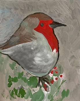 A robin by Peter  McPartlin