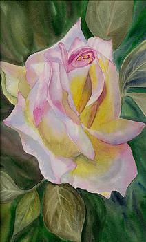 Dee Carpenter - A Rose So Sweet