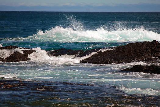 Harvey Barrison - A Santiago Seacape