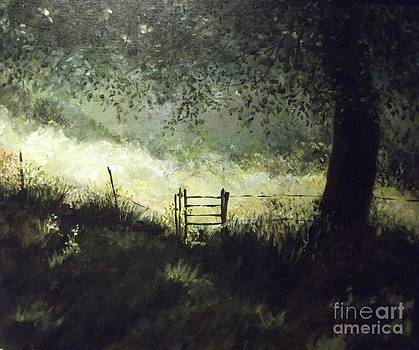 A shady Meadow by Lizzy Forrester