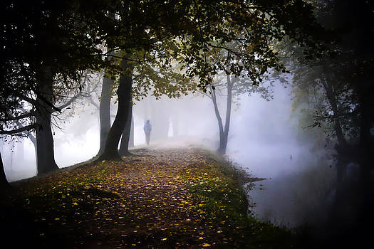 A Stroll in the Clouds by Steve Buckenberger
