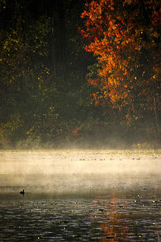 A Touch of Mist by Steve Buckenberger