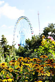 A View of the Texas State Fair 2 by Melina Geil
