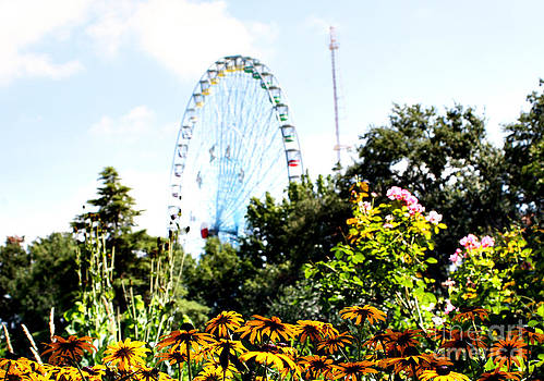 A View of the Texas State Fair by Melina Geil