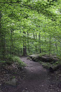 Wes and Dotty Weber - A Walk in the Catskills