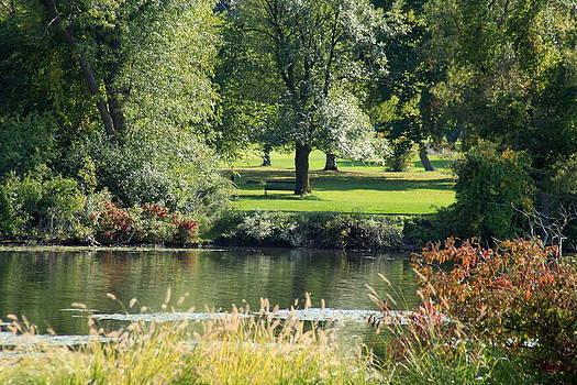 A Walk In The Gardens by Beverly Kobee
