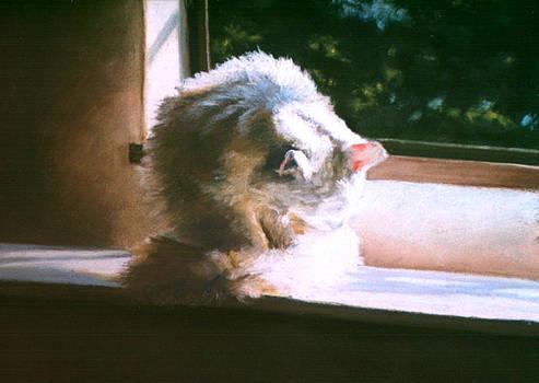 A Warm Bath by Bernadette Kazmarski