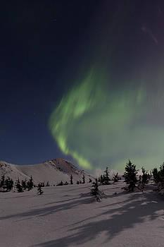 Tim Grams - A Wave of Auroras