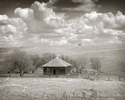 Abandoned Farmhouse by Andrea Kelley