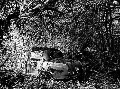 Kevin D Davis - Abandoned II BW LS